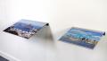 Pintura de Retoque - Baía de Guanabara e Manhattan. Mostra Entre Trópicos. cur Marisa Florido. 2012. Foto Rafael Adorjan