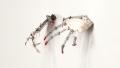 Escultura Cinética Base para Unhas Fracas. Mostra High Tech Low Tech . Oi Futuro - foto Vicente de Mello